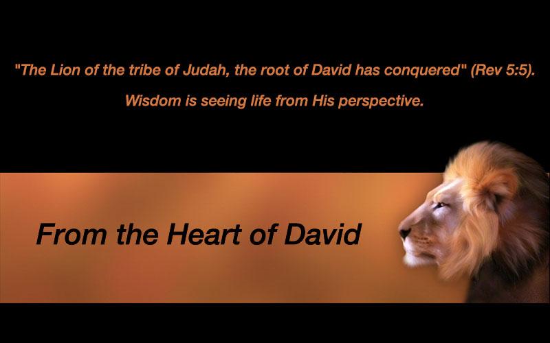Heart of David Ministries